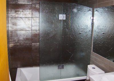 textured-shower-door-31-1024x770